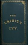 The Trinity Ivy, 1875