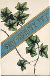 The Trinity Ivy, 1885