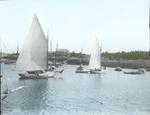Matinicus Harbor, Maine