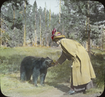 Untitled:  Woman Interacting with Small Black Bear (National Audubon Societies, 1974 Broadway, New York)