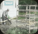 Assistant Curtiss Job Making Crates, N. Manitoba