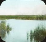 Marsh on Fire, Lake Winnipegosis, N. Manitoba