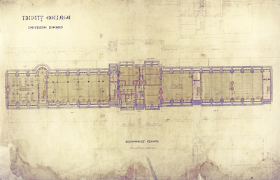 Trinity College Architectural Drawings For The Long Walk